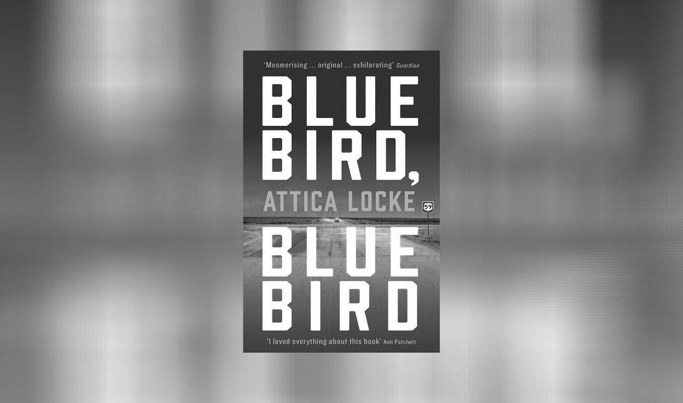 Virtual Book Club: Bluebird, Bluebird